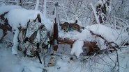 Субботняя вылазка на охоту