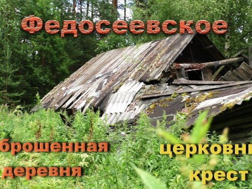 Заброшенная деревня Федосеевское. Проволока в деревьях, сады,дома,бани.