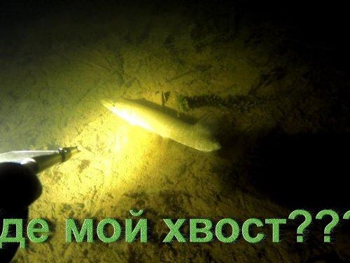 Подводная охота 11 ноября. Сыктывкар.