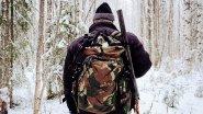Сказочная тайга. Поход в лес. Лесная жизнь. Пролог