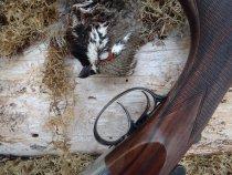 Осенняя охота на рябчика с манком-пищиком