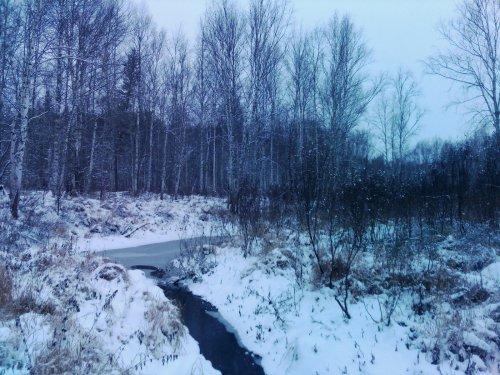 Таёжная речка, вид с другого берега.