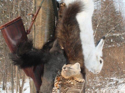 Трофеи выходного ноябрьского охотничьего дня