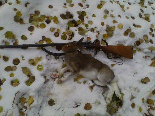 "Охота с ""тулкой"""