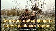 Охота на зайца, фазана, утку с легавыми