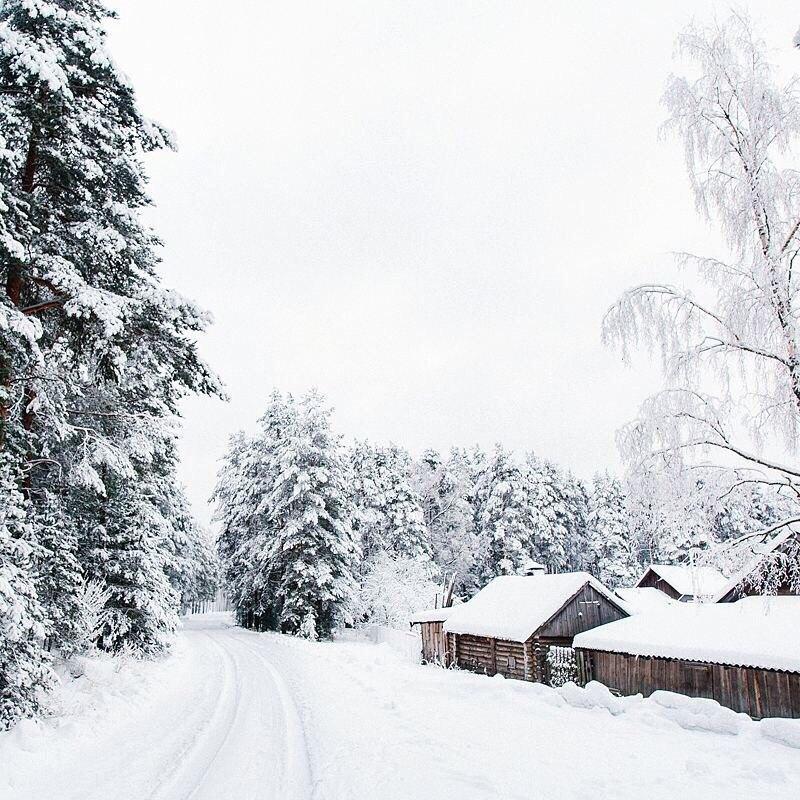 Зима в Новгородской области..