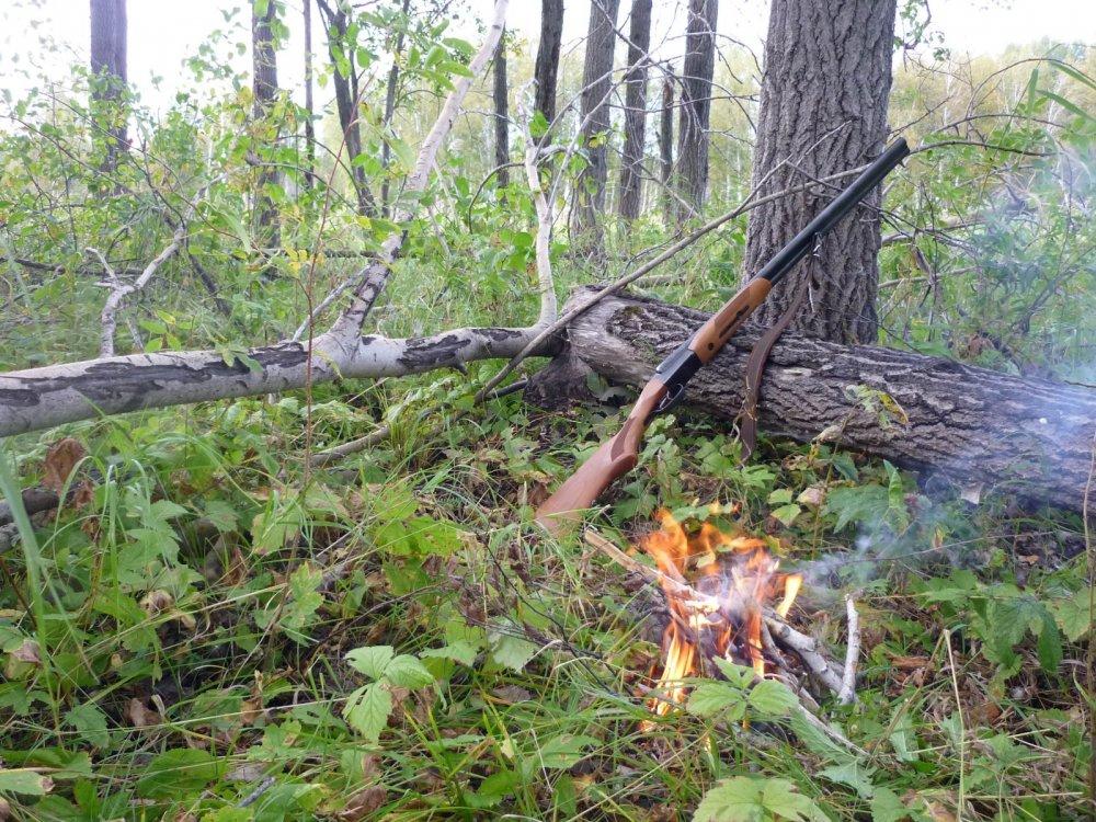 В ране-осеннем лесу, с Муркой.....