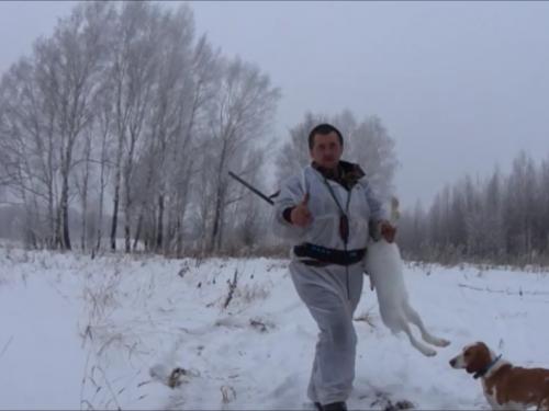 Охота с эстонской гончей!