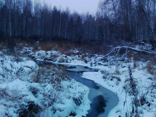 Таёжная речка.