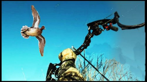 BoWHunting the Duck!!!