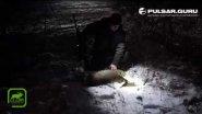 Трейлер к фильму охота на кабана и оленя в Беларуси.