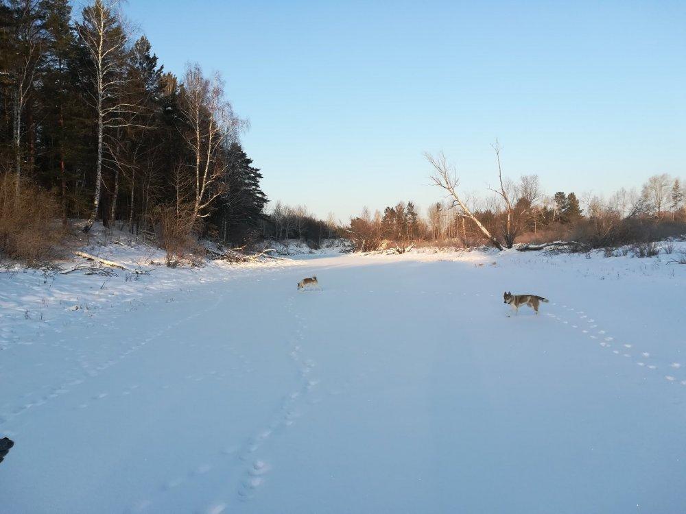 По зимней реке