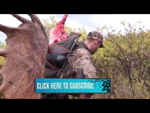 Amazing hunting kill shots/Охота за рубежом ТОП