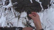 Охота на бобра капканом Барнаул зимой. Необычные случаи на охоте. Когда не везет по полной!