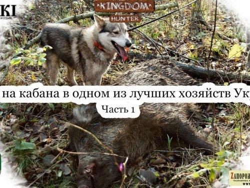 Охота на кабана и косулю в одном из лучших хозяйств Украины (с участием Астахова и Kiev Hunters) Ч.1