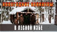 НА 6 ДНЕЙ В ЛЕСНУЮ ИЗБУ В НОВОГОДНИЕ КАНИКУЛЫ. (лесная изба, зимой в лес,, жизнь в тайге)
