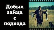 Вот как должен работать русский охотничий спаниель!)))