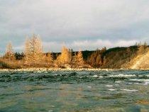 Осень на Тамыре