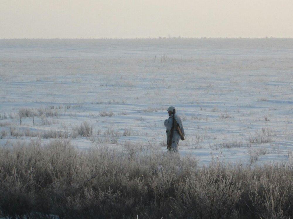 Прекрасно пустынна зимняя степь...