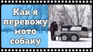 Мотобуксировщик БТС 500 с лыжным модулем. Транспортировка мотособаки на далёкие расстояния.