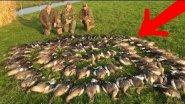 Весенняя охота на гуся 2018 - УЖЕ НАЧАЛАСЬ. Они МАССОВО ЛЕТЯТ к нам