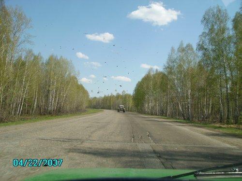 дорога на охоту))