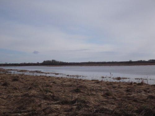 прошлый год поле почти все в воде)