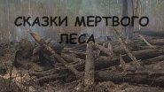 Сказки мёртвого леса. С чистого листа.
