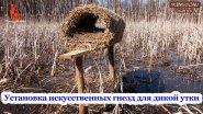 Установка искусственных гнезд для дикой утки