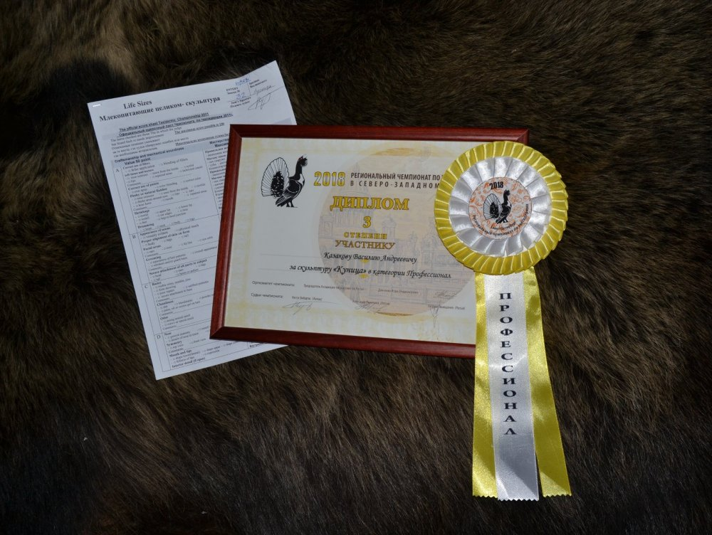 Региональный Чемпионат СЗ по таксидермии март 2018 в г. Санкт-Петербурге.