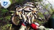 Рыбалка на севере, труднодоступное и дикое место. Кругом медведи и лоси. Часть 1.