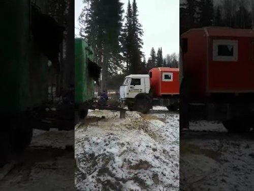 Медведь в гости к нефтянникам пришел