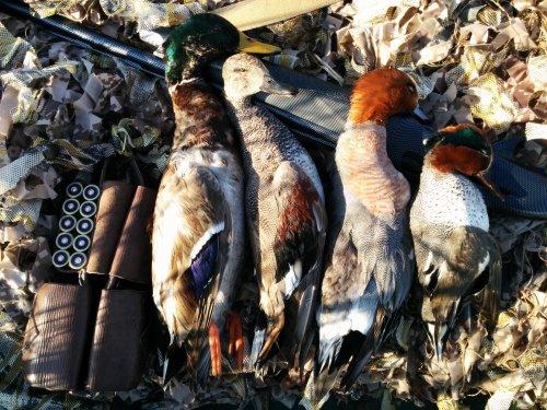Тщательная подготовка к сезону охоты , залог успешной охоты .