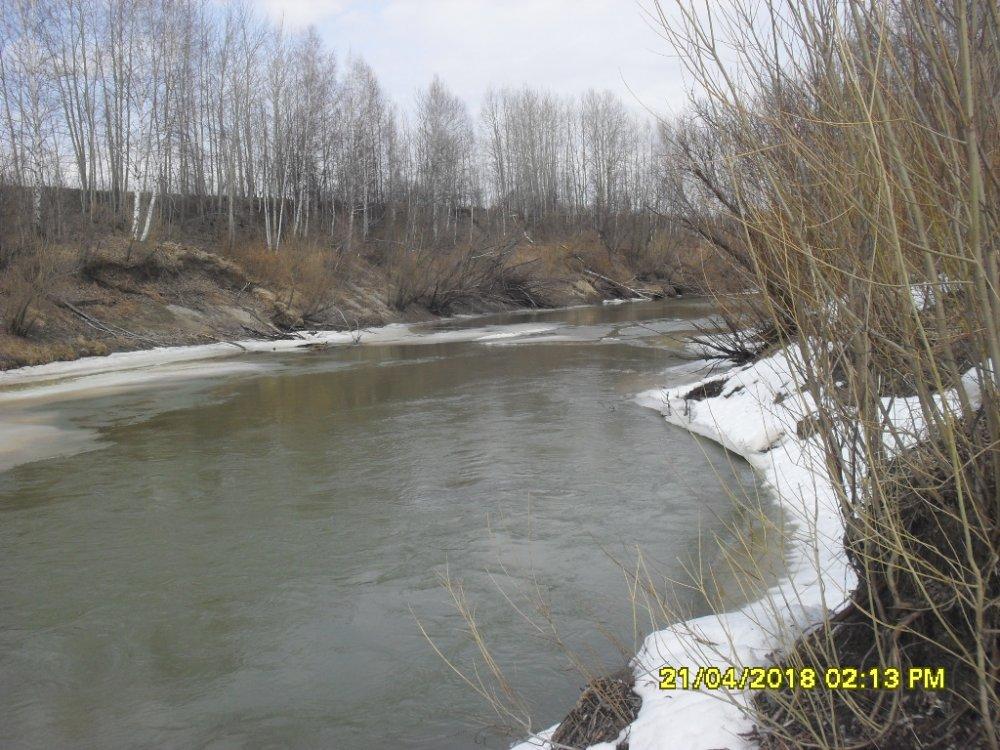 Река Парбиг