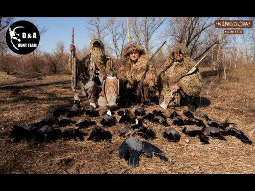 Весенняя охота на серую ворону.Отстрел серой вороны.Crow hunting.