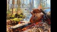 Путь охотника, необычный костер - жаровня, запеченное мясо, кровать из мешков, тайга