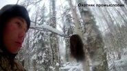Охота на соболя с лайками день 2 добыли кота ЧАСТЬ 3