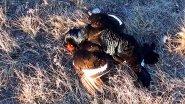 Весенняя охота на утку и грустный тетерев