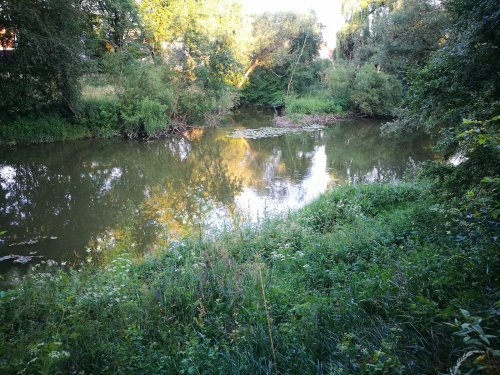 Река Некар.