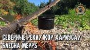 Таёжные приключения/Попали на жор хариуса/Блесна Меппс