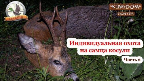 Индивидуальная охота на самца косули.  Часть 2