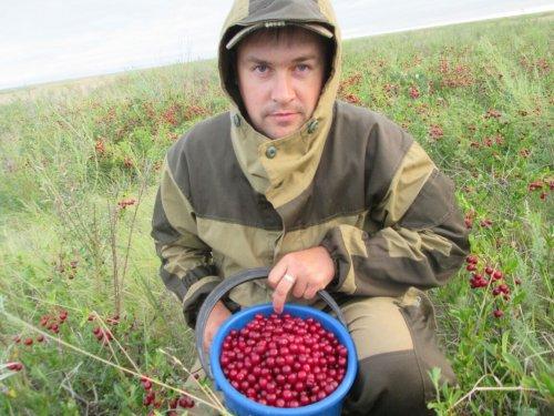 Стрельнули)))