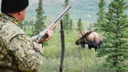 Реальные охотничьи моменты с добычей лося