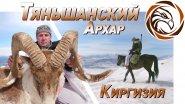 ГОРНАЯ ОХОТА НА ТЯНЬШАНСКОГО АРХАРА (Mountain hunting in Kyrgyzstan)