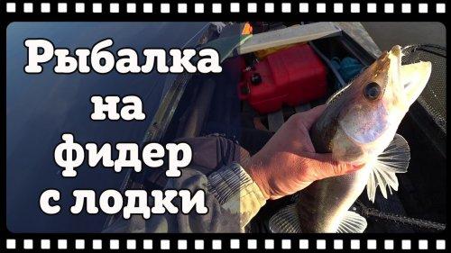 Рыбалка на фидер с лодки. Судак, язь, лещ на фидер.