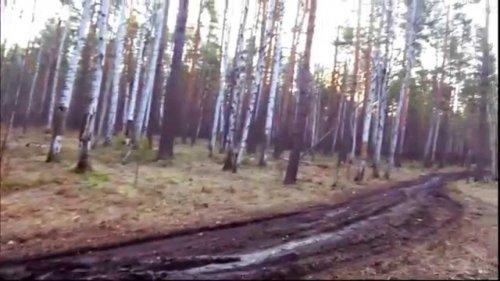 Нива, как едет нива в сыром лесу на простой резине. Я на ниве езжу на резине Я-192.
