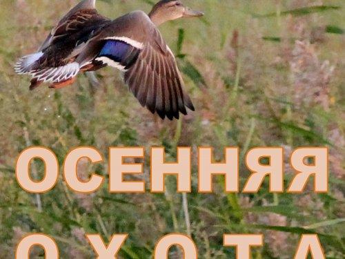 Открытие осенне-зимнего сезона охоты 2018 года в Омской области