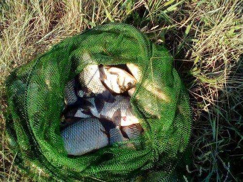 Рыбалим