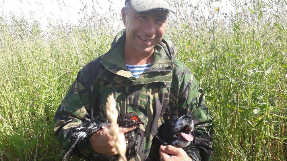 Как ушатали петуха одни курицы