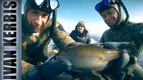 Лучшие выстрелы по лососевым 2018. Подводная охота на форель и хариуса в Енисее.